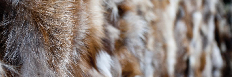 certificazioni-pellicce-internazionali